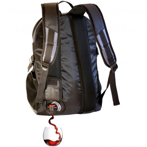 Day Pack Backpack Grey pour